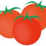 ミニトマト栽培にチャレンジ!でもどの品種を選べばいい?