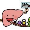 肝臓に良い食べ物 悪い食べ物とは何ですか?